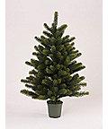 <三越・伊勢丹/公式> ★クリスマスツリー 90cm画像