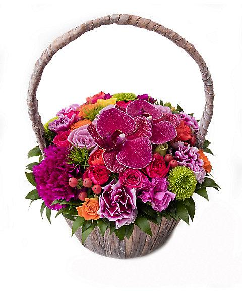 <Nicolai Bergmann Flowers & Design(Nicolai Bergmann)>【母の日】【11】【12】2016年 母の日限定 フレッシュフラワーアレンジメント(マルチカラー) 【12】M