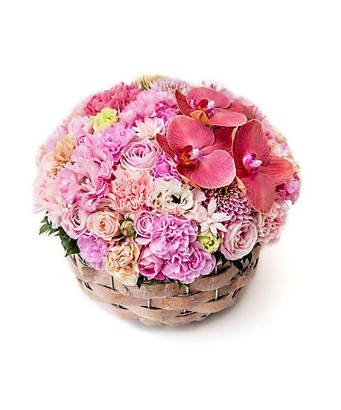 <Nicolai Bergmann Flowers & Design(Nicolai Bergmann)>【母の日】【8】【9】【10】2016年 母の日限定 フレッシュフラワーアレンジメント(ピンク) 【10】L