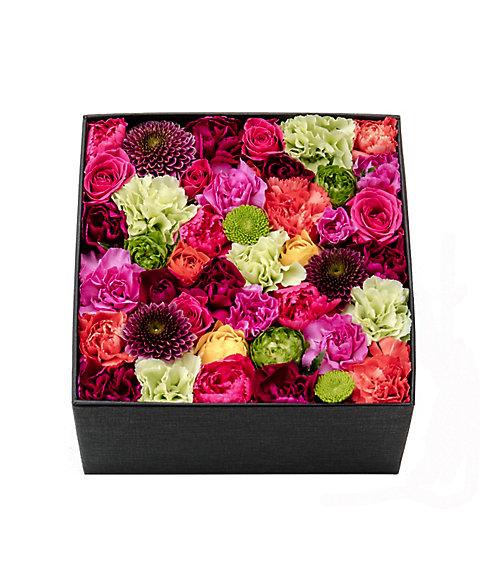 <Nicolai Bergmann Flowers & Design(Nicolai Bergmann)>【母の日】【5】【6】【7】