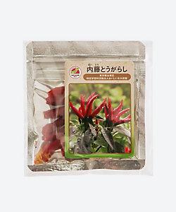 MI FOODSTYLE(野菜・フルーツ)/エムアイフードスタイル(野菜・フルーツ) 【新宿】内藤とうがらし