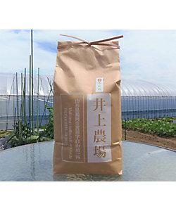 山形<井上農場>/イノウエノウジョウ ★【産直】雪若丸5kg 特別栽培米