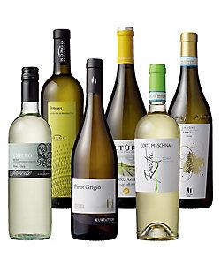 35.多様性に富んだイタリアを州別品種別に巡る白ワイン6州6品種6本セット