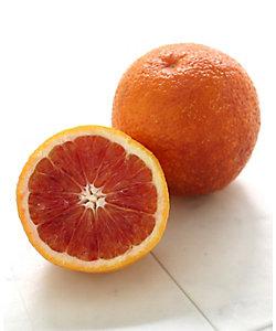 SUN FRUITS/サン・フルーツ 【3月届】愛媛県産 ブラッドオレンジ