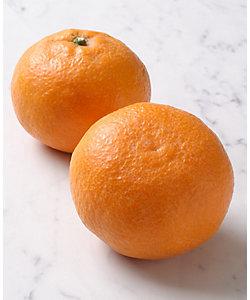 SUN FRUITS/サン・フルーツ 【4月届】愛媛県産 カラオレンジ