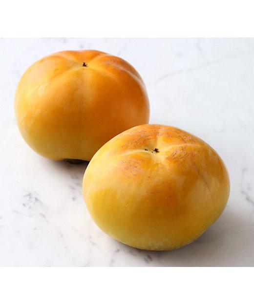 <SUN FRUITS/サン・フルーツ>【10月届】熊本県産 太秋柿【三越伊勢丹/公式】
