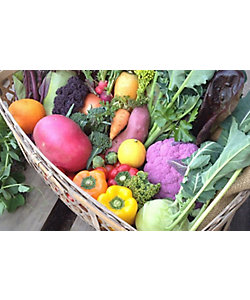MI FOODSTYLE(野菜・フルーツ)/エムアイフードスタイル(野菜・フルーツ) <コスモファーム>野菜ボックス