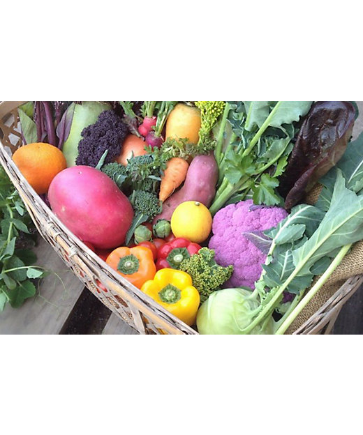 <コスモファーム>野菜ボックス