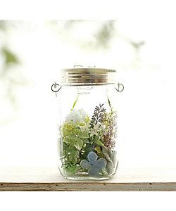 Honey Garden/ハニーガーデン 水色のソネングラス