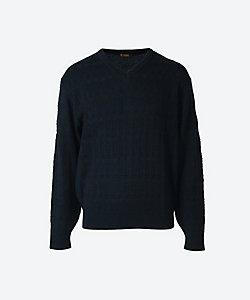 ARAMIS(Men)/アラミス 【紳士大きいサイズ】Vセーター