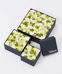 Nicolai Bergmann Flowers & Design/ニコライ バーグマン フラワーズ & デザイン 【伊勢丹新宿店限定】フレッシュフラワーボックス(ホワイト)