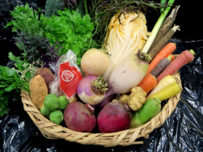<NOTO高農園>9月のお野菜詰合せ