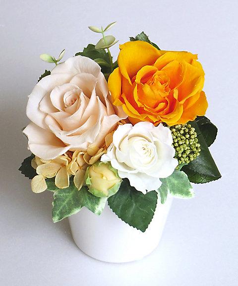<ベル・フル-ル/Belles Fleur> アミ イエロー 【三越・伊勢丹/公式】
