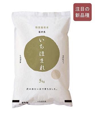 福井県産いちほまれ 特別栽培米
