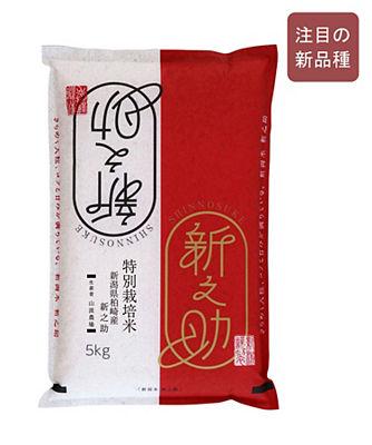 新潟県産 新之助 特別栽培米