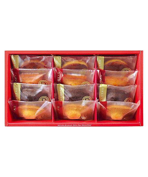 <DALLOYAU/ダロワイヨ>【チョコレート】ドゥミセック詰め合わせ(12個入)(洋菓子)【三越伊勢丹/公式】