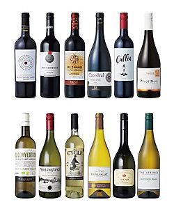 033.12カ国世界の赤・白ワイン飲みくらべ12本セット