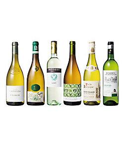 人気のシャブリを含む辛口白ワイン6本セット 08202