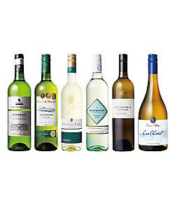 世界のソーヴィニヨン・ブラン白ワイン飲みくらべ6本セット 08203
