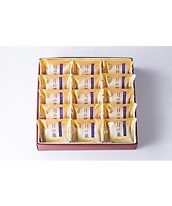 <三越伊勢丹/公式><新宿中村屋/シンジュクナカムラヤ> 月の菓15個入(和菓子)