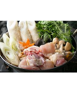 築地 鳥藤/ツキジ トリトウ 絶品スープを最後まで味わう!比内地鶏きりたんぽ鍋セット 煮込み麺付き