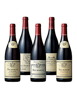 07.ブルゴーニュの定番〈ルイ・ジャド〉による秋を愉しむ赤ワイン5本セット