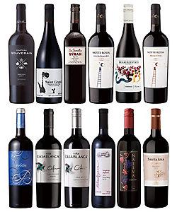 012.世界各国品種別飲みくらべ 濃厚赤ワイン12本セット
