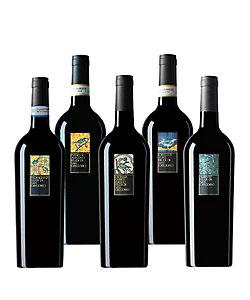 24.南イタリアの代表産地カンパーニャ州の土着品種を探求する白ワイン5本セット