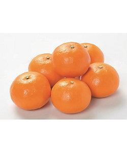 MI FOODSTYLE(野菜・フルーツ)/エムアイフードスタイル(野菜・フルーツ) 【4月届】ISETANFRUTS 三重県産 カラオレンジ