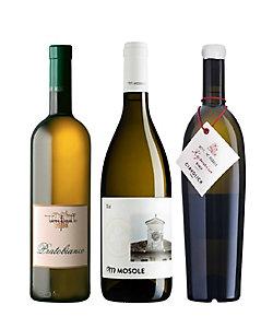 21.土着品種の魅惑の香りを愉しむアロマティック白ワイン3本セット