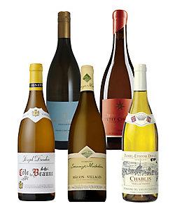白ワイン5本セット