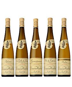 16.最高評価三ツ星の自然派生産者「ヴァインバック」白ワイン品種別5本セット
