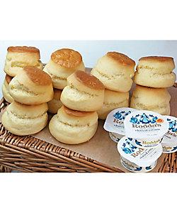 Rodda's/ロダス クロテッドクリームスコーンセット 12個 プレーン