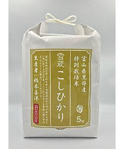 【令和一年度産】富山県黒部産 こしひかり 5kg
