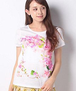 MADAM JOCONDE(Women)/マダム ジョコンダ 【洗える】フローラルパネルプリント コットン天竺Tシャツ