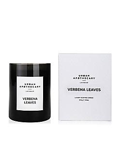 グラスキャンドル L VERBENA LEAVES