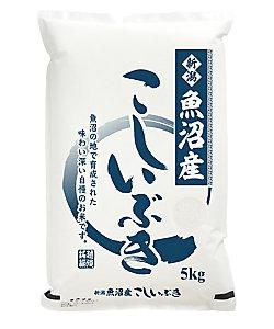 (DHL)新潟県魚沼産 こしいぶき 08156/08157